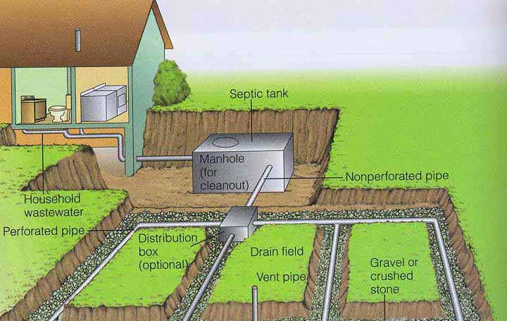 The drainfield for Septic tank distribution box location