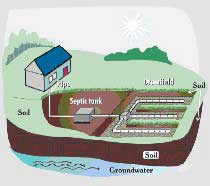 Locate Your Drainfield